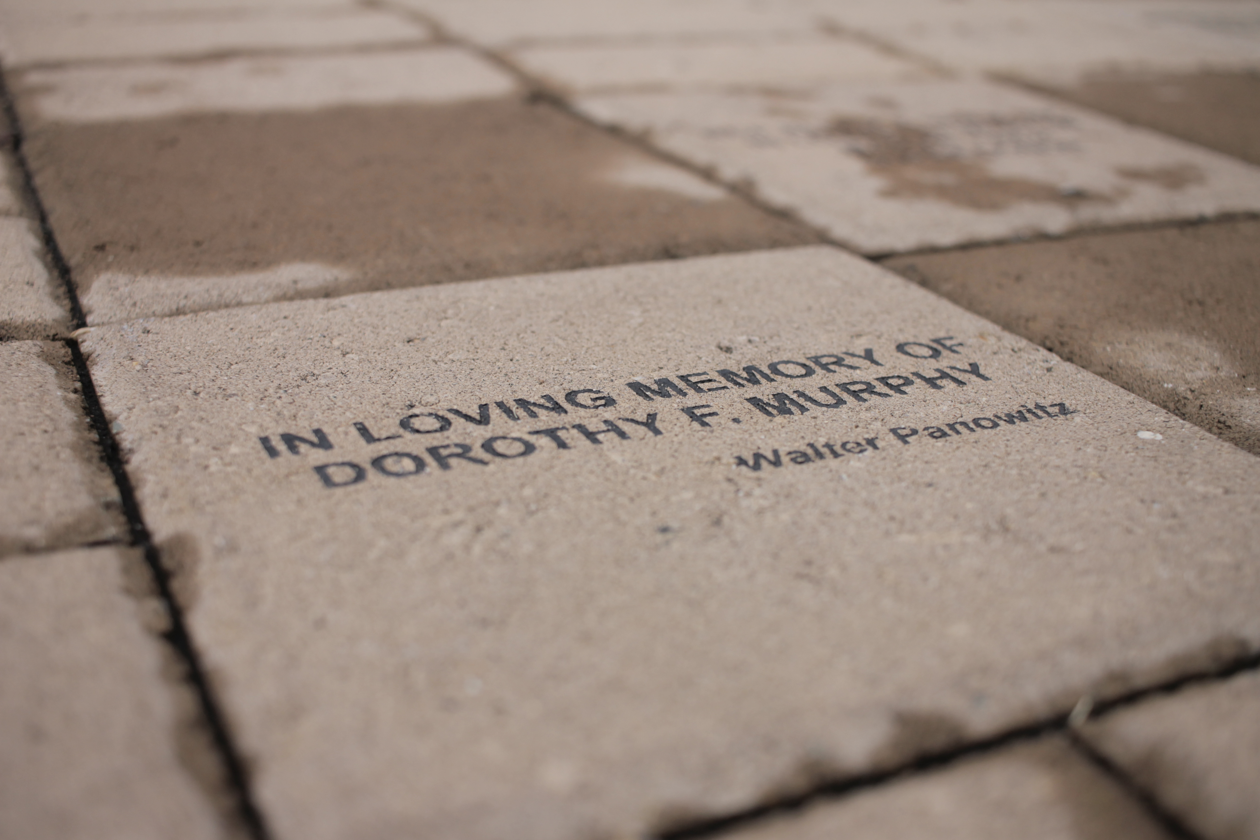 Etched Brick to Dorothy Murphy at Gateway Donor Center
